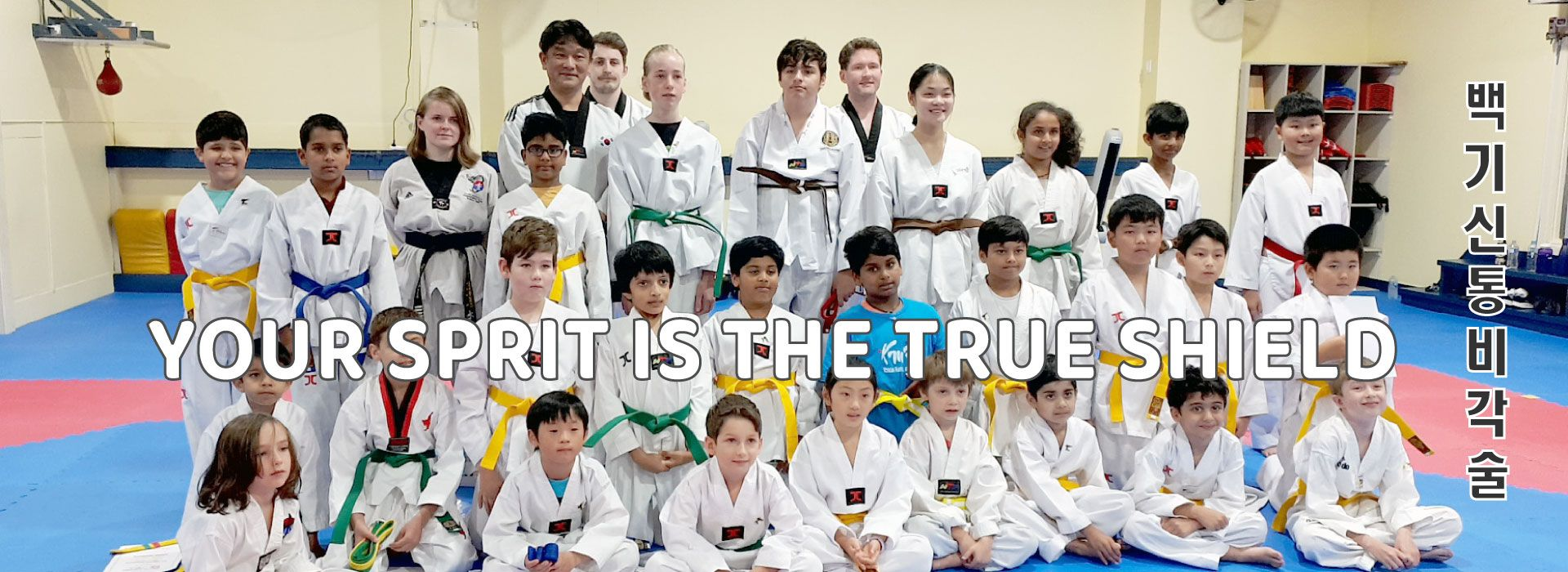K MARTIAL ARTS & FITNESS photo